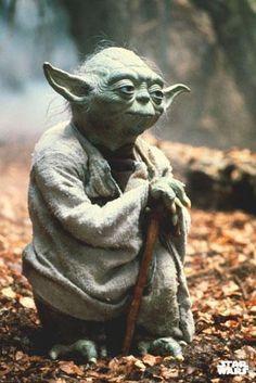 Poster - Star Wars - Yoda - FRI FRAKT! på Tradera.com