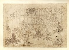Earthly Paradise: Beatrice among the virtues, the group moves on, Dante bathes in the Eunoe  Creator: Botticelli, Sandro Date: c.1480-c.1495 Medium: drawing