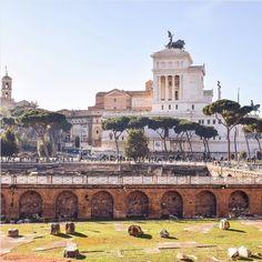 Roma (@Roma)   Twitter