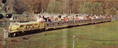 Jimmy Morgan Zoo Birmingham, AL Train