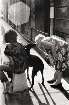 Black & White Photography, Celebrating Henri Cartier-Bresson; by Peter Rodger