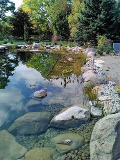 Outdoor Ponds, Ponds Backyard, Garden Pool, Water Garden, Swimming Pool Pond, Natural Swimming Ponds, Natural Play Spaces, Pond Construction, Water Features In The Garden