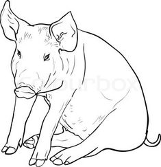Pig Black And White - Free Transparent PNG Clipart Images Download