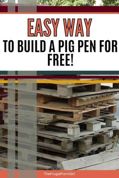 Are you looking for an inexpensive and easy way to make your own pig pen? This post will show you how we built ours using pallets. It's free, durable, and sturdy! Ways To Save Money, Money Saving Tips, Meat Farms, Pig Pen, Free Pallets, Mini Pig, Gardening For Beginners, Growing Vegetables, Frugal Living