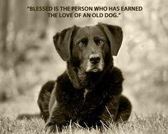 La mejor de las bendiciones!