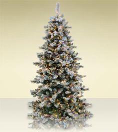e6a792d7d49e Flocked Scotch Pine Artificial Christmas Trees - Classics Collection