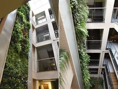 Green architecture. #design #decor #nature #plants #casadevalentina