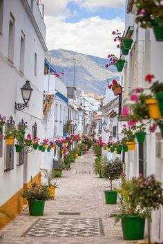Estepona, Andalusia, Spain (by malaga blanca ) Travel Around The World, Around The Worlds, Beautiful Streets, Explore Travel, National Geographic Photos, Your Shot, Countries Of The World, Travel Photos, Travel Tips