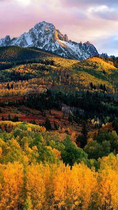 Autumn rainbow - dia dem - Google+