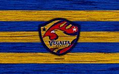 Download wallpapers Vegalta Sendai, 4k, emblem, J-League, wooden texture, Japan, Vegalta Sendai FC, soccer, football club, logo, FC Vegalta Sendai