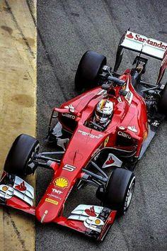 #F1 Pilot Sebastian Vettel
