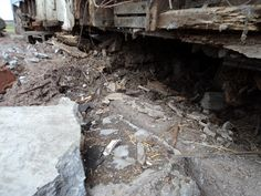 So much rot, and termite damage to the parsonage and well church too...Our plans to move right into the parsonage is on the way back burner...not sure how fast we can reach it....