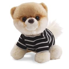 Boo: The Worlds Cutest Dog Plush Toy Collection from Gund