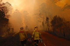 Catastrophic Wildfires Threaten Sydney, Australia, as Government Backs Coal - af. - The ENVIRONMENT # Climatechangeprotestsigns # Outdoorkitchenbars Bushfires In Australia, Port Macquarie, Australian Bush, Sea Level Rise, North Coast, The Clash, Sydney Australia, Gravure, Natural World