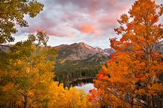 Photo of Rocky Mountain National Park by Steven Sawusch America's Great Outdoors : Photo http://americasgreatoutdoors.tumblr.com/image/97142959699