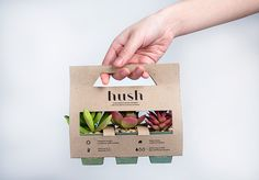 packaging hush is the quiet and sustainable statement in a happy home. Suculentas Diy, Cactus Y Suculentas, Seed Packaging, Flower Packaging, Vegetable Packaging, Swag Ideas, Plant Box, Seed Paper, Plant Design
