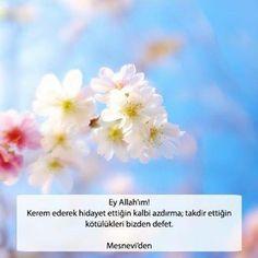 Ey Allah'ım! Kerem ederek hidayet ettiğin kalbi azdırma; takdir ettiğin kötülükleri bizden defet.  Mesnevi'den