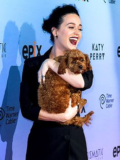 Katy Perry cuddled an adorable dog at the EPIX world premiere screening of Katy Perry: The Prismatic World Tour in L.A. on March 26.