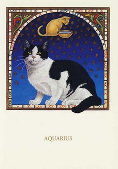 Cards, Cats-Art, Francien.van.Westering - 96.11 | Ernie | Flickr