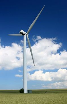 Wind is a Natural resource. Wind turbines can generate electricity.This is renewable energy.