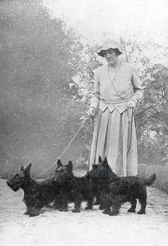 Vintage Scotties, love the oldies, more leg and longer tails, still so cute