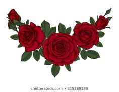Find Beautiful Bouquet Red Roses Leaves Floral stock images in HD and millions of other royalty-free stock photos, illustrations and vectors in the Shutterstock collection. Gulab Flower, Bush Drawing, Pink Roses Background, Rose Drawing Tattoo, 3d Rose, Flower Phone Wallpaper, Clipart Black And White, Rose Bush, Cover Tattoo