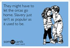 They might have to let the orcas go home. Slavery just isn't as popular as it used to be.