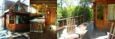The Coucal Cabin Forest Cabin, Knysna, Deck, African, Places, Outdoor Decor, Home Decor, Homemade Home Decor, Decks