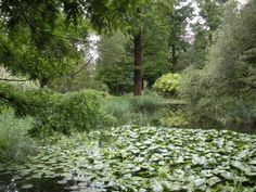 Also Both. Garden, Strasbourg