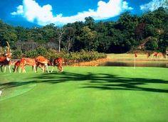 Gokarna Forest Golf Resort and Spa (Kathmandu, Nepal)