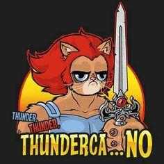 Thunder-grumpy-cats
