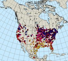 Monarch Butterfly Migration - Spring 2016