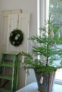 .white door. chippy green step ladder. charlie brown tree. antique olive basket.