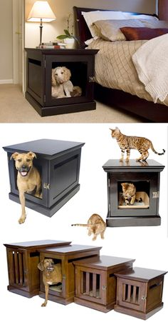 I would love this for the dogs...however I think for the cats it would be discusting to have their litter box next to your bed?? ew! And I would never spend $500 for this either...but cool idea!