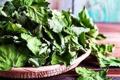 Suszone liście czarnej porzeczki Healing Herbs, Lettuce, Spinach, Spices, Menu, Vegetables, Healthy, Food, Salad
