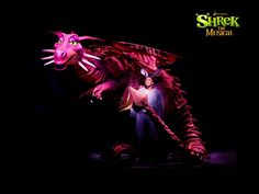 Shrek the musical... The dragon was very cool to see on stage