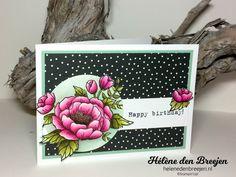 Stampin'Up! Birthday blooms watercoloring – Hélène den Breejen