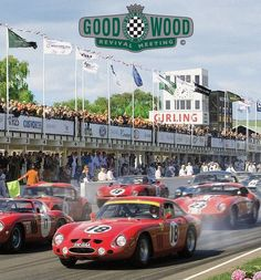 The Goodwood Mortor Circuit has been open since 1948 Goodwood Circuit, Visit York, British Traditions, Classic Race Cars, Goodwood Festival, Matchbox Cars, Chichester, Car Engine, Gto