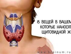 8 вещей в вашем доме, которые наносят вред щитовидной железе
