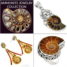 Ammonite handmade  Jewelry Collection in Sterling Silver from Jaipur, India.  https://www.jewelexi.com/gemstones/jewelry/ammonite/ From our home to yours' with love. #india #handmade #sterling #silver #ring #earrings #pendant #necklace #bracelet #natural #jaipur #india #wholesale #rajasthan  #artisan #healing #crystals #gemstone #Ammonite