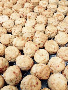 Delicious cheese scones