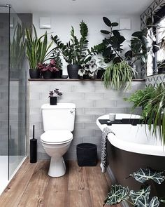 Interior Design Badezimmerpflanzen Gardening Facts Article Body: Gardening can be described as an ar Bathroom Interior Design, Bathroom Decor, Home, Interior, Dream Bathrooms, Gorgeous Bathroom, Bathroom Design, Beautiful Bathrooms, Bathroom Plants