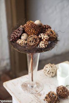 Talventörröttäjä kotiin – 5 kaunista ideaa!   Kotivinkki Planting Flowers, Stuffed Mushrooms, Anna, Vegetables, Cake, Desserts, Plants, Food, Stuff Mushrooms