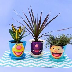 Learning about plants is a great way to introduce children to science and nature, PLUS Tobee, Milo and Ben are excited to get some new hair! These sprout heads can be made with small plants or succulents, or you can try planting some seeds and watching them sprout! Simple Crafts, Easy Crafts For Kids, Easy Diy Crafts, Earth Day Activities, Craft Activities For Kids, Simple App, Super Simple, Transition Songs, Classroom Inspiration