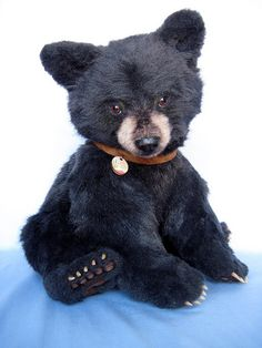 Eveleth, a bear for Hope - Joanne Livingston - Desert Mountain Bear