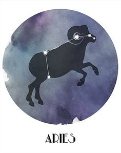 ARIES the Ram Arians are energetic, dynamic and independent. They love to get things started, and they make sure things happen.