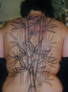 Bamboo Tattoo | Bamboo Valance Photo