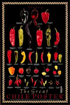 Fresh Chili Peppers - Chile Fresco Varieties Poster