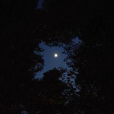 Είναι κάποιες στιγμέςο ουρανός το φεγγάρι τα δέντρα το σύμπαν... που συνδέεσαι με το Άπειρο.  Αρκεί να έχεις WiFi βέβαια.