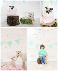 Easter Lamb Sessions Live Sweet Photography Lindsey Bonnice - Children's Portrait Photographer  www.livesweetblog.com